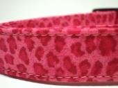 pink-tacular